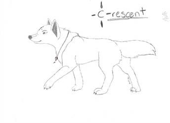 Crescent walk by aluekasivu