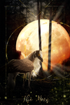 The Moon by Mocarro