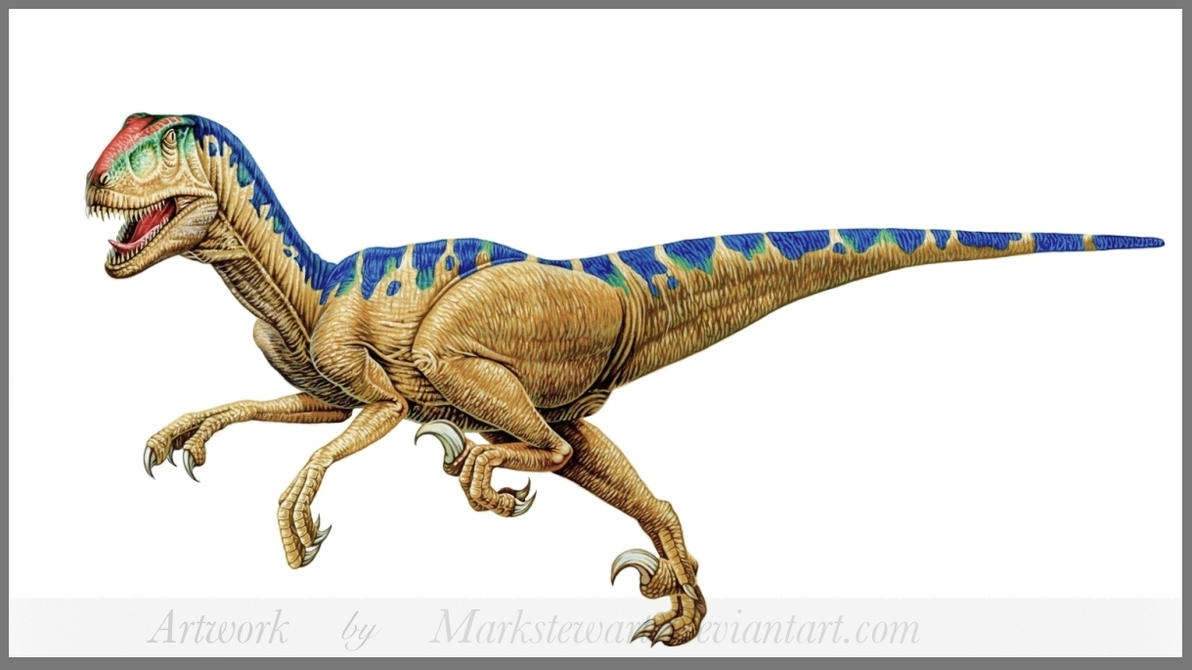 Deinonychus by markstewart on DeviantArt
