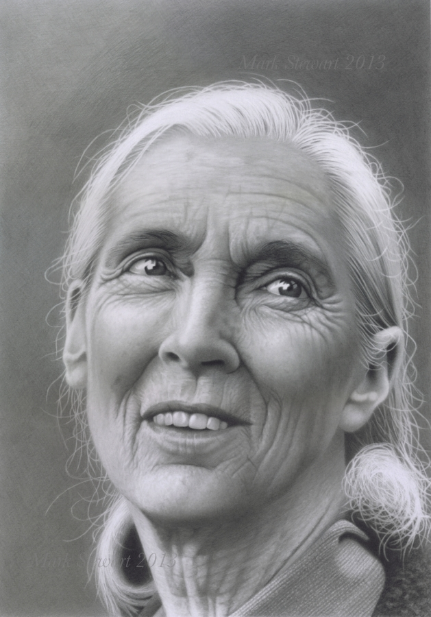 Jane Goodall DBE by markstewart