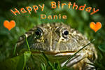.: Happy Birthday Danie :.