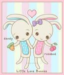 Little Love Bunnies