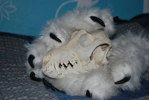 Wolf Paw Gloves with skull