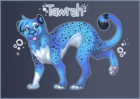 Tawreh by Felizz