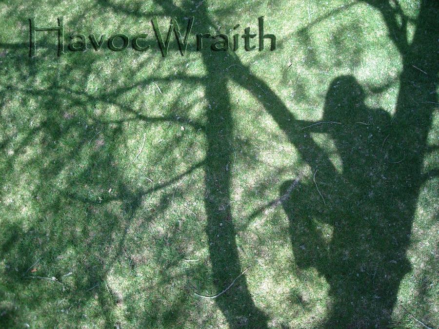 HavocWraith's Profile Picture