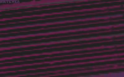pink lines