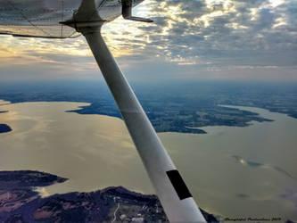 Early Morning Flight by Gardynn7