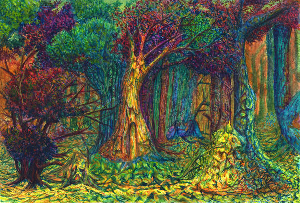 In The Thicket of Magic Forest by AldemButcher