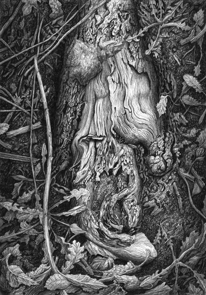 Wooden purgatory - pencil by AldemButcher