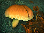 Bright and mysterious hypholoma
