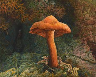 Cushy Fairy Tale World by CalciteMink1610