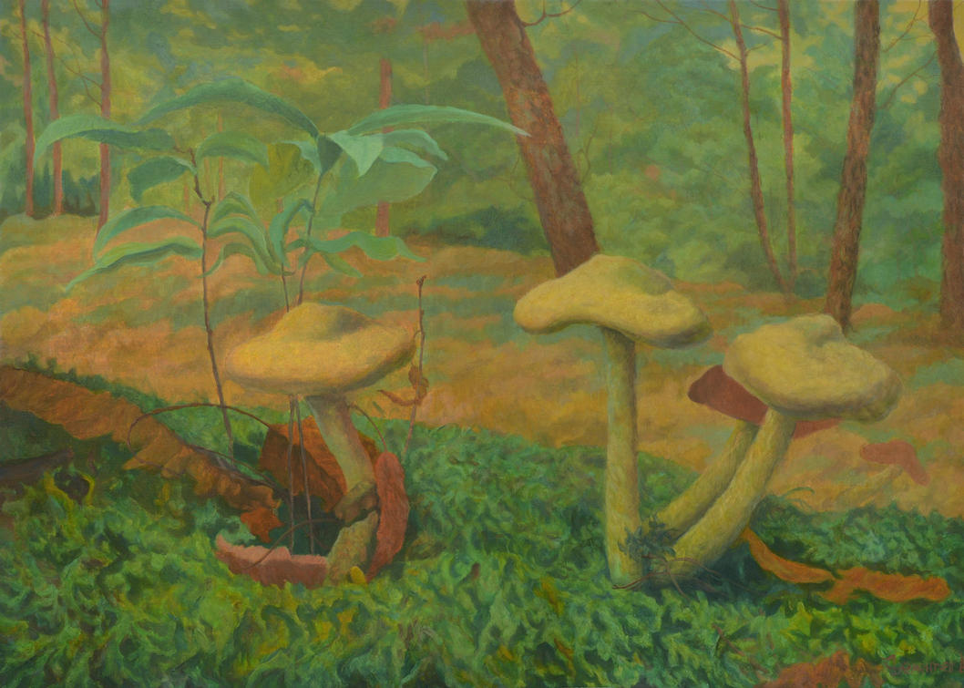 A Company Of Mushrooms by AldemButcher