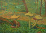 A Company Of Mushrooms by CalciteMink1610