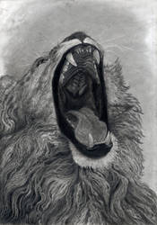 Lion's  Mouth  2020