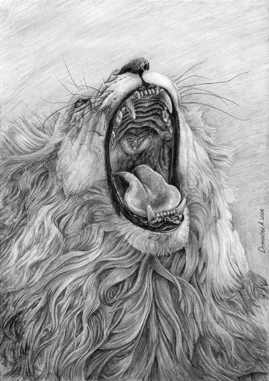 Lion's Mouth by AldemButcher