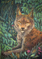 Lynx's Portrait by CalciteMink1610