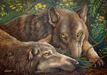 Wolves Think About Life