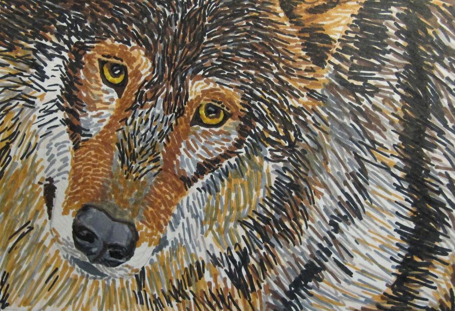 Wolf Face by blazingstorm