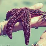 To Catch A Star by Monochrome5