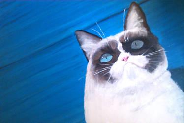 Grumpy on blue by oddno1ishere