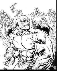Incredible Hulk preview by TomRaney