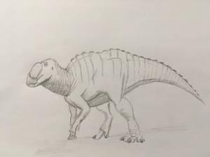 Gryposaurus Practice Sketch