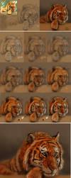 Tiger Practice by SteveDeLaMare