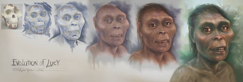 Evolution of Lucy by SteveDeLaMare