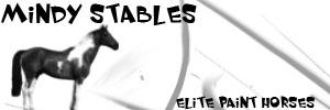 Mindy Stables by diamonddesignsz