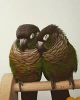 sleepy birds by ghelfaire
