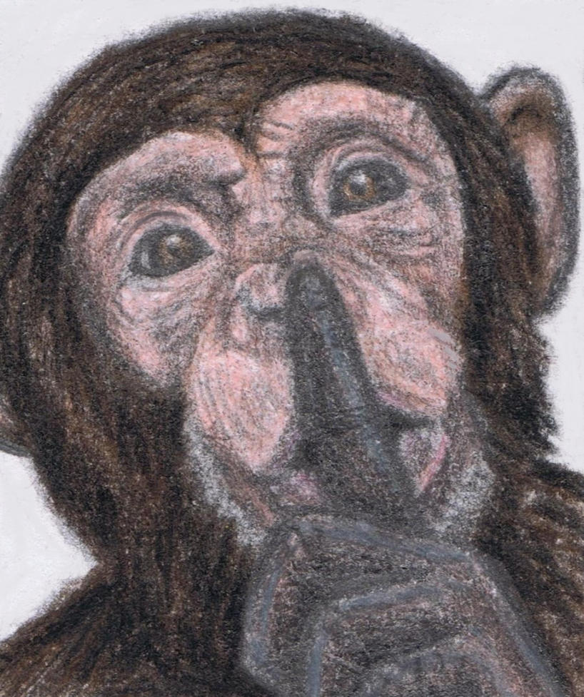 chimp_says_shh_by_gagambo-d64bqmn - Jungle people: 40 years ago thought dead - Philippine Business News
