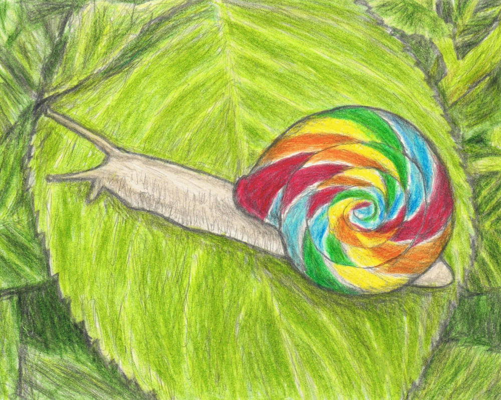 Lollipop snail by gagambo