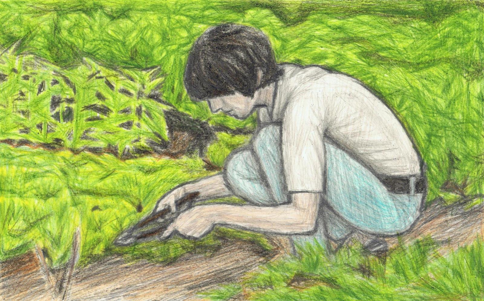 George Harrison the gardener by gagambo