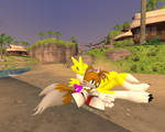 Tails and Renamon