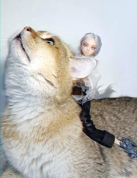 Huntress Silver Fox