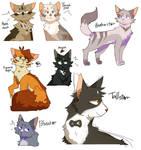 buncha cats