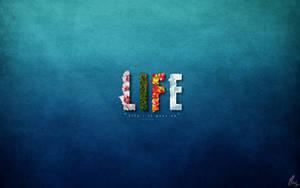 Life by mushir