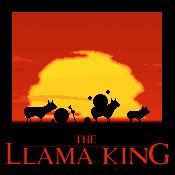 The Llama King