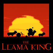 The Llama King by mushir