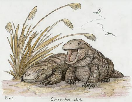 Draw Dinovember day 17 ~ Simosuchus clarki