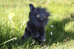 Custom lionhead rabbit