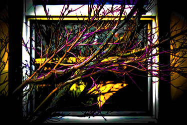 Branches by WrittenRuse