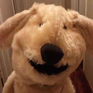 RickXHoshinji's Profile Picture