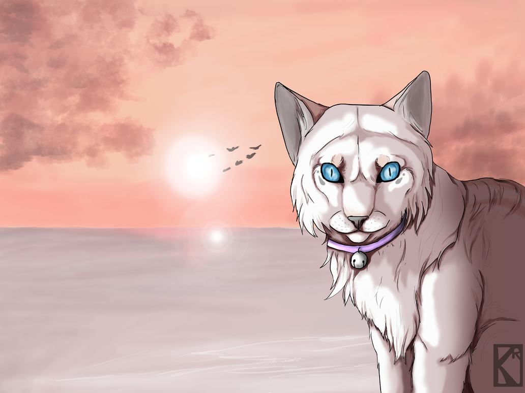 Sunrise Princess by CaledonCat