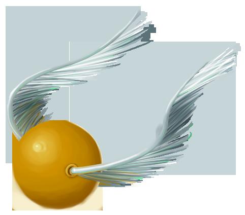 Golden Snitch by RhynnCollins