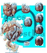 Tales of Ostlea: Iced Coffee Dragon by RhynnCollins