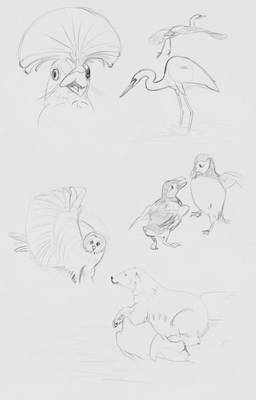 Daily Sketches - 14 April 2016