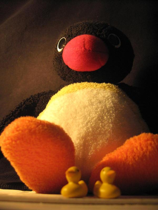 Pingu by oOniKkiOo