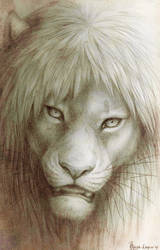 Lion head by OmegaLioness