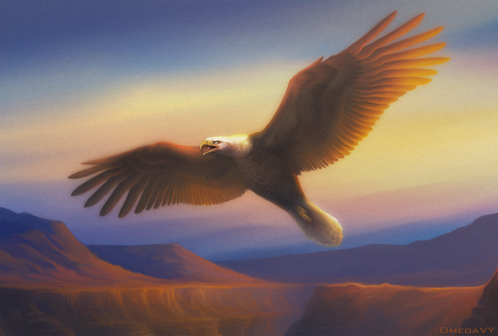 Fly eagle fly by OmegaLioness
